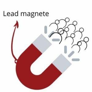 lead magnete
